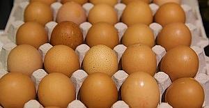Belçika Yumurta Krizi Konusunda Okları Hollanda'ya Yöneltti