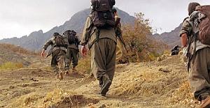 Kandil'den Gelen Kadro Korkak Çıktı! Afrin'den Kaçıyorlar!