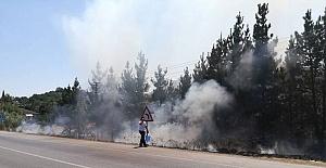 Samsun'da Yol Kenerındaki Otların Tutuşması Tehlike Saçtı