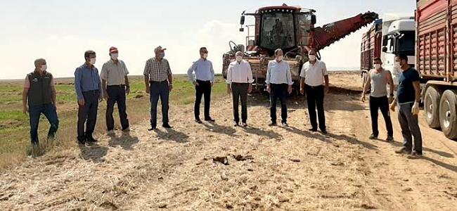 Eskişehir Şeker Fabrikası Pancar Alımı Kampanyası Başladı