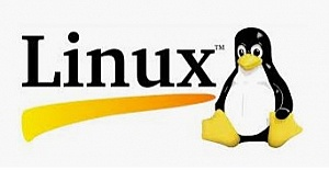 Linux Disk Kullanımı Nedir?